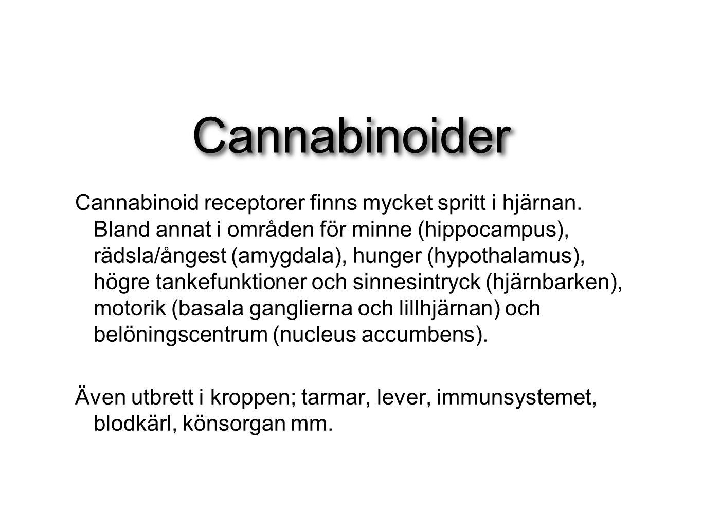 Cannabinoider Cannabinoid receptorer finns mycket spritt i hjärnan. Bland annat i områden för minne (hippocampus), rädsla/ångest (amygdala), hunger (h