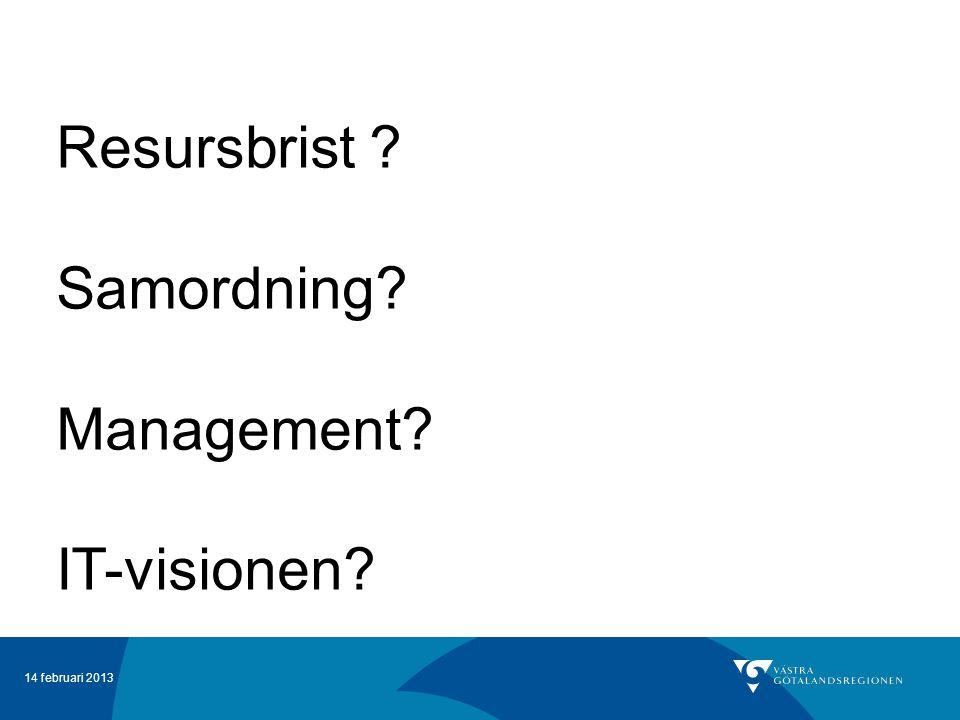 14 februari 2013 Resursbrist ? Samordning? Management? IT-visionen?