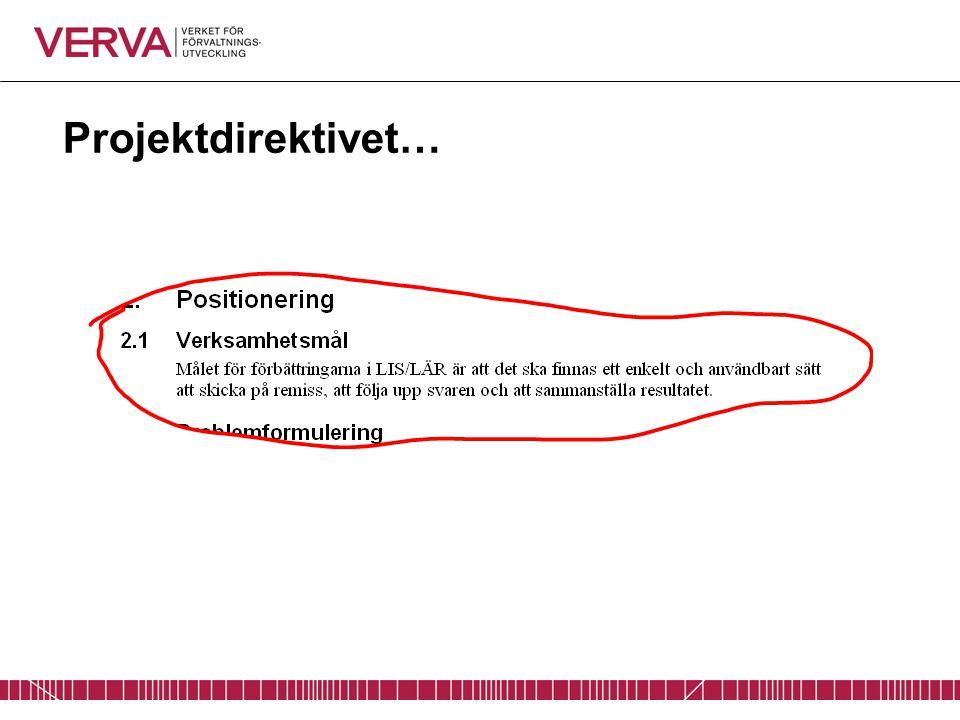 Projektdirektivet…