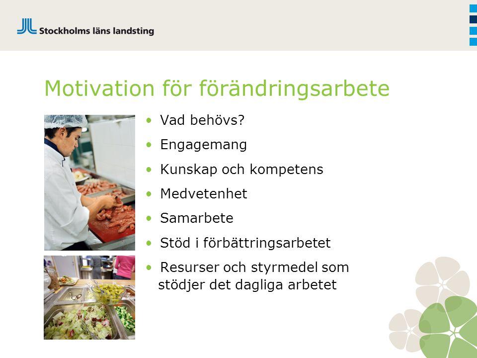 Motivation för förändringsarbete Vad behövs? Engagemang Kunskap och kompetens Medvetenhet Samarbete Stöd i förbättringsarbetet Resurser och styrmedel