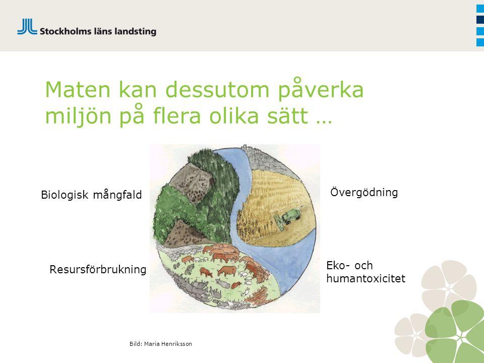 Övergödning Biologisk mångfald Resursförbrukning Maten kan dessutom påverka miljön på flera olika sätt … Eko- och humantoxicitet Bild: Maria Henriksso