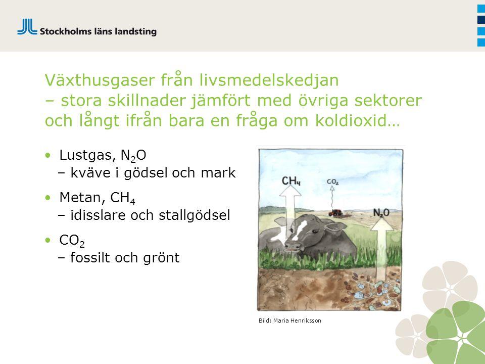 Totalt bidrag till miljöeffekt Koldioxid Metan Lustgas 1x x25 x298 Utsläpp som bidrar till miljöeffekt Utsläppens styrka till miljöeffekten CO 2 -ekv.