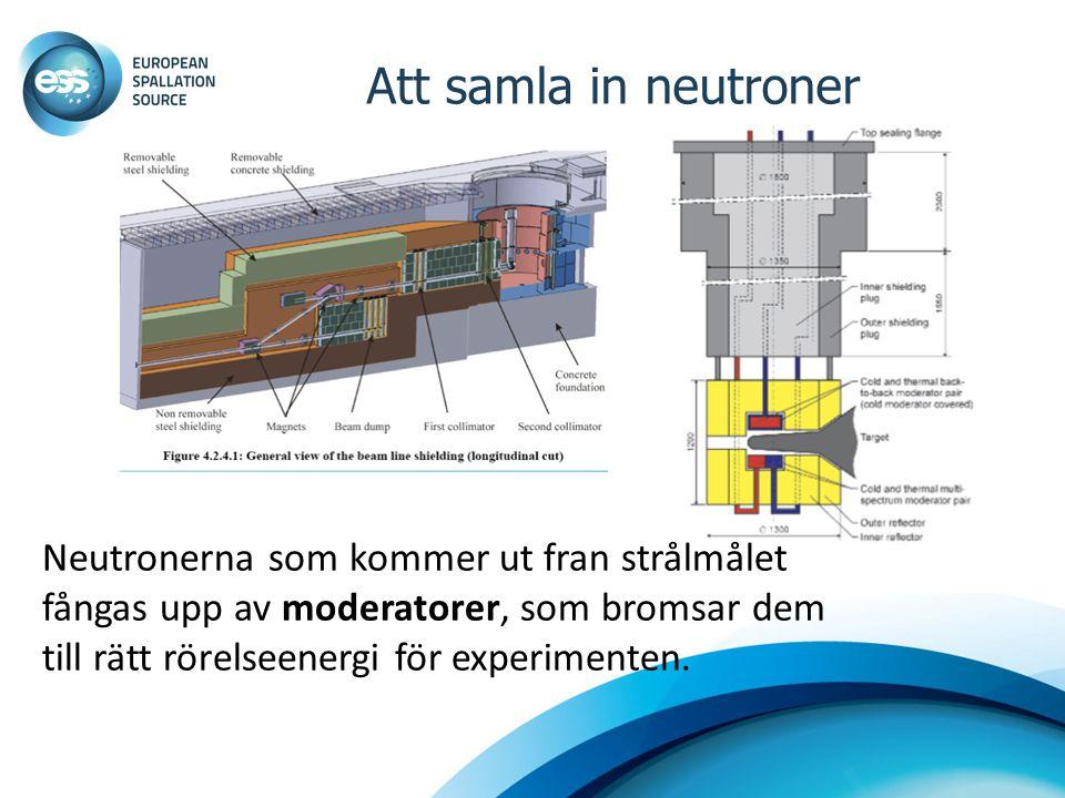 Att samla in neutroner Neutronerna som kommer ut fran strålmålet fångas upp av moderatorer, som bromsar dem till rätt rörelseenergi för experimenten.