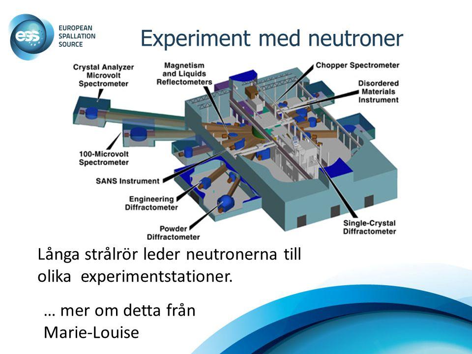 Experiment med neutroner … mer om detta från Marie-Louise Långa strålrör leder neutronerna till olika experimentstationer.