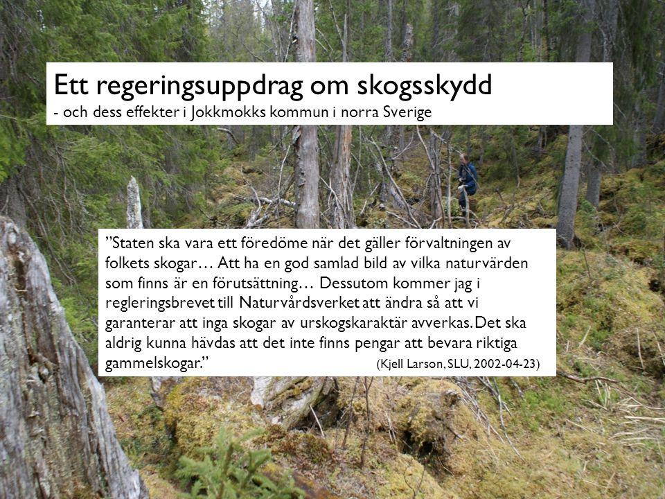 Aktörernas framtidsbilder - + Skogssektorns förändring Marknaden kräver kontinuerlig anpassning.