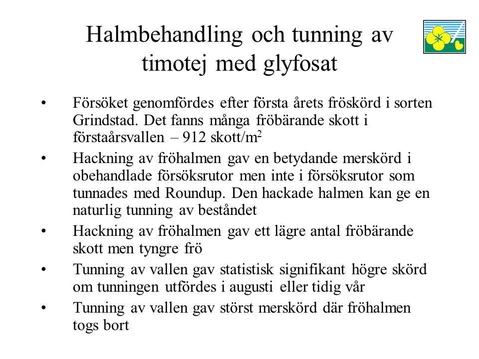 Halmbehandling och tunning av timotej med glyfosat Försöket genomfördes efter första årets fröskörd i sorten Grindstad.