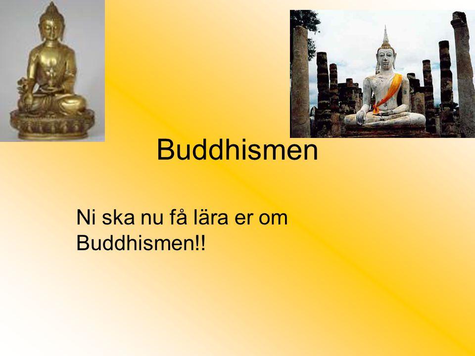 Buddhismen Ni ska nu få lära er om Buddhismen!!