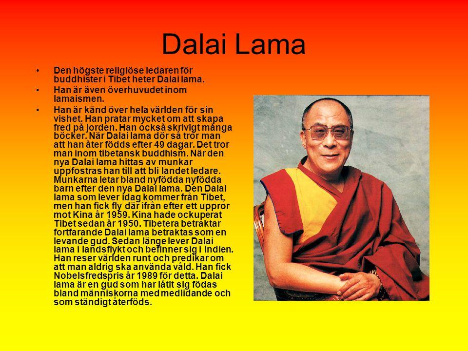 Dalai Lama Den högste religiöse ledaren för buddhister i Tibet heter Dalai lama.