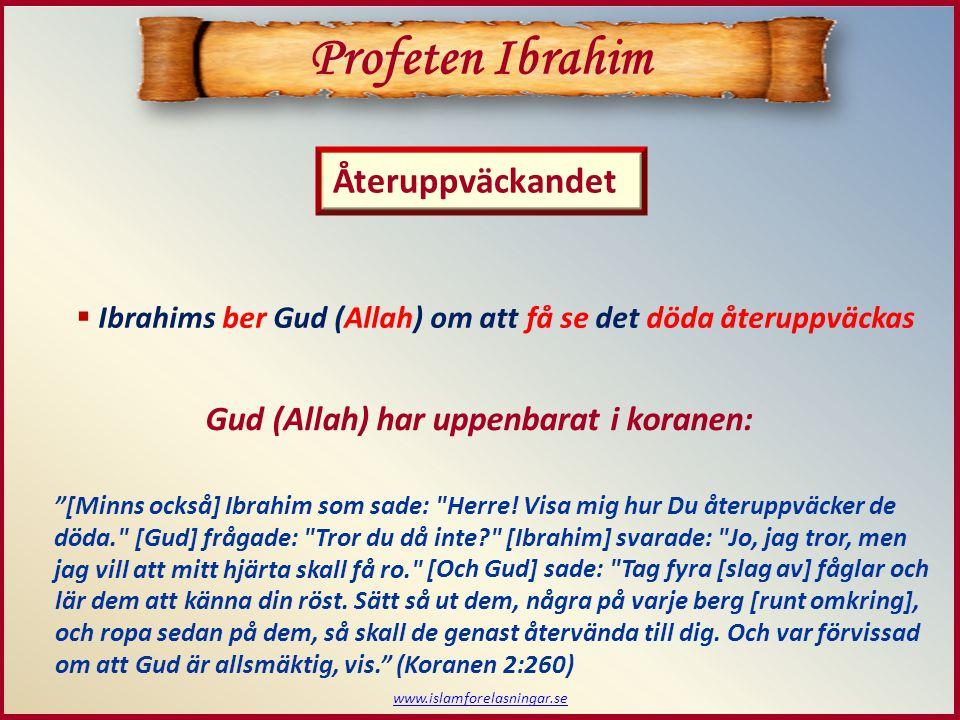 www.islamforelasningar.se  Ibrahims ber Gud (Allah) om att få se det döda återuppväckas Profeten Ibrahim Återuppväckandet Gud (Allah) har uppenbarat
