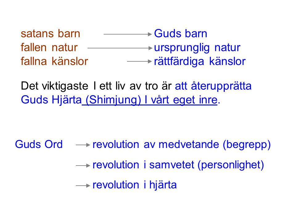 (1)8 Vertikala Nivåer Tjänars tjänare Tjänare Adopterad Son StyvsonSann Son Moder (eller man/hustru) Fader (eller fader/moder) God a.