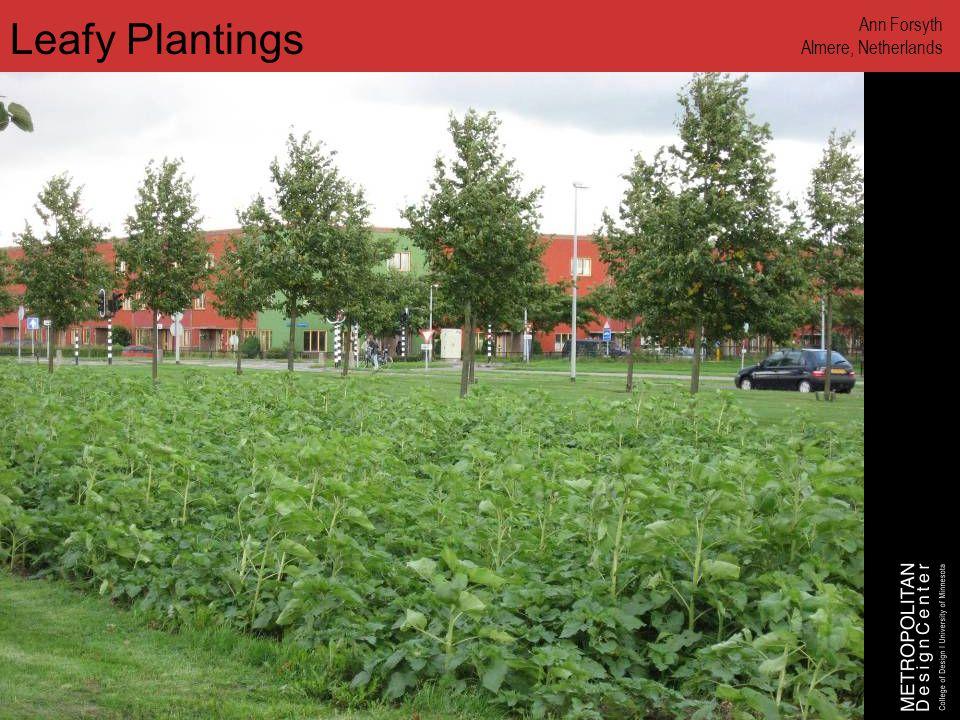 www.designcenter.umn.edu Leafy Plantings Ann Forsyth Almere, Netherlands