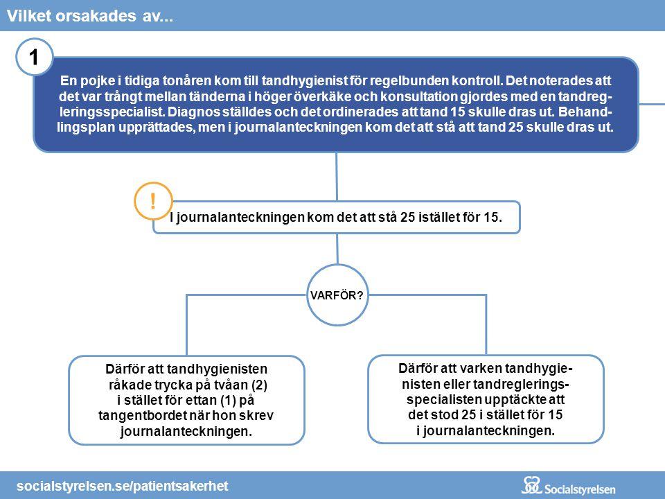 socialstyrelsen.se/patientsakerhet Gick fel för att...Vad hände? socialstyrelsen.se/patientsakerhet I journalanteckningen kom det att stå 25 istället