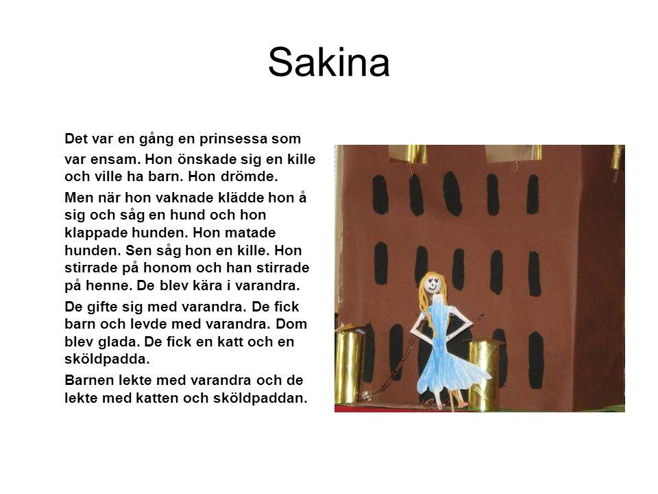 Sakina Det var en gång en prinsessa som var ensam. Hon önskade sig en kille och ville ha barn. Hon drömde. Men när hon vaknade klädde hon å sig och så