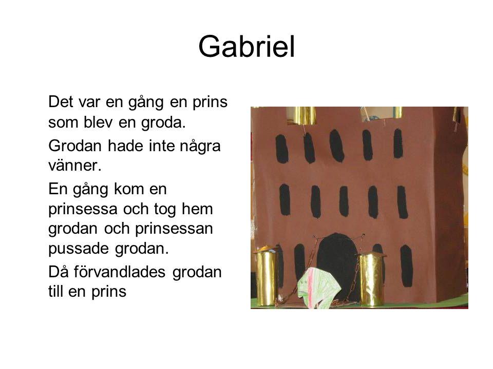 Gabriel Det var en gång en prins som blev en groda. Grodan hade inte några vänner. En gång kom en prinsessa och tog hem grodan och prinsessan pussade