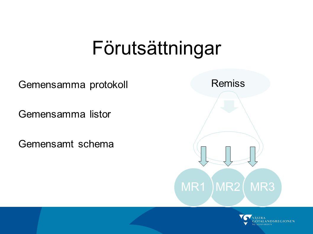 Förutsättningar Gemensamma protokoll Gemensamma listor Gemensamt schema MR2MR1MR3 Remiss