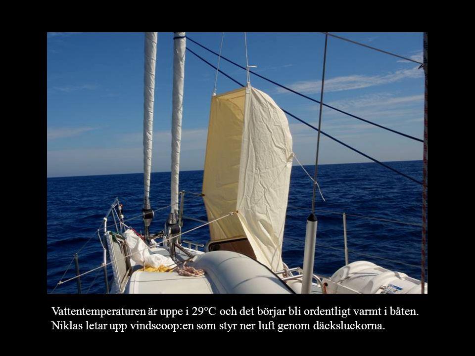 Vattentemperaturen är uppe i 29°C och det börjar bli ordentligt varmt i båten.
