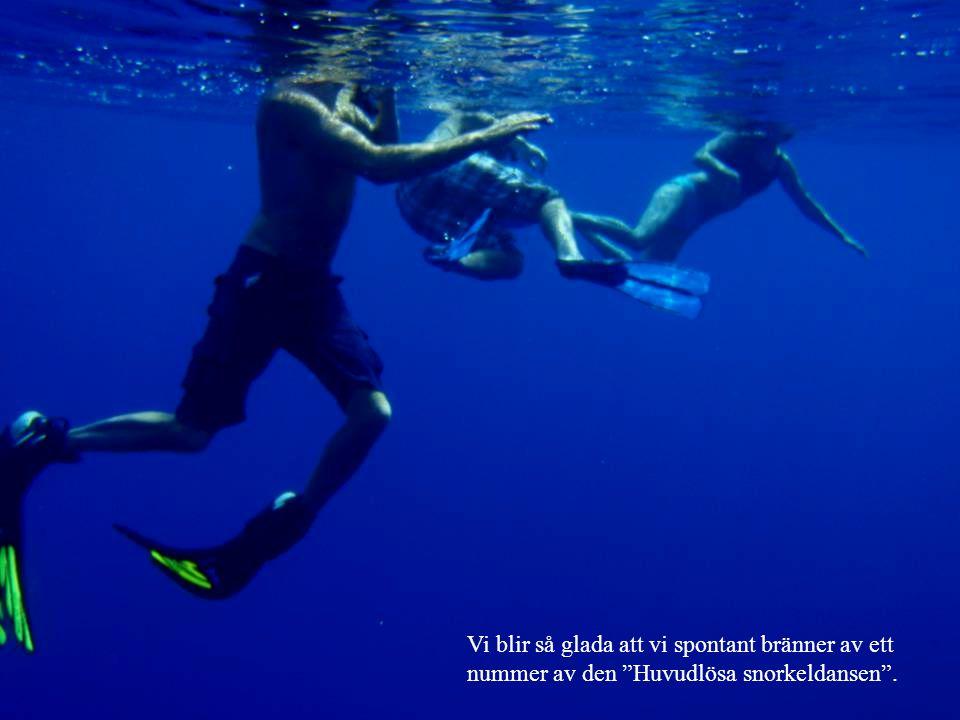 Vi blir så glada att vi spontant bränner av ett nummer av den Huvudlösa snorkeldansen .