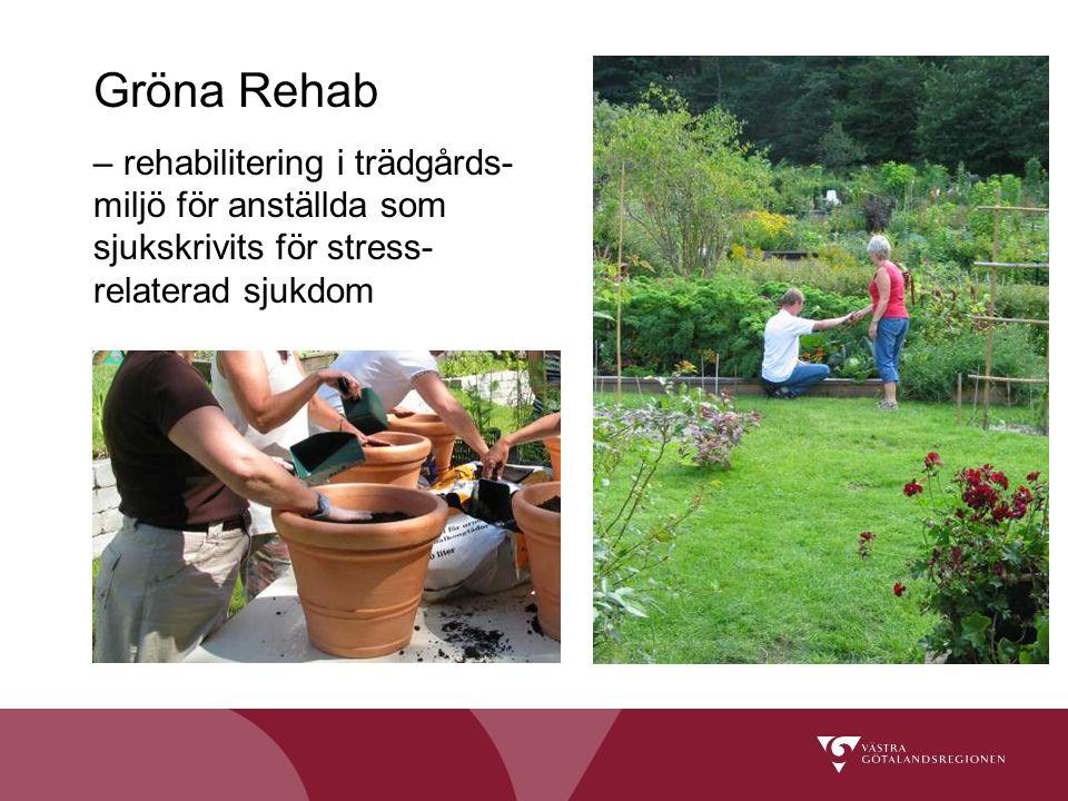 Gröna Rehab – rehabilitering i trädgårds- miljö för anställda som sjukskrivits för stress- relaterad sjukdom