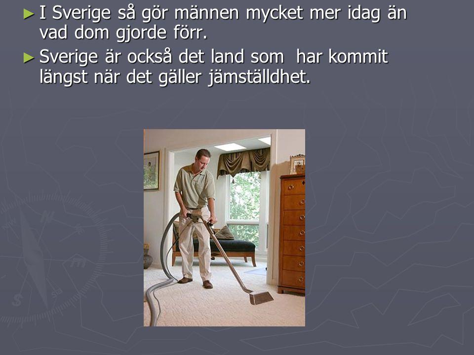 ► I Sverige så gör männen mycket mer idag än vad dom gjorde förr.