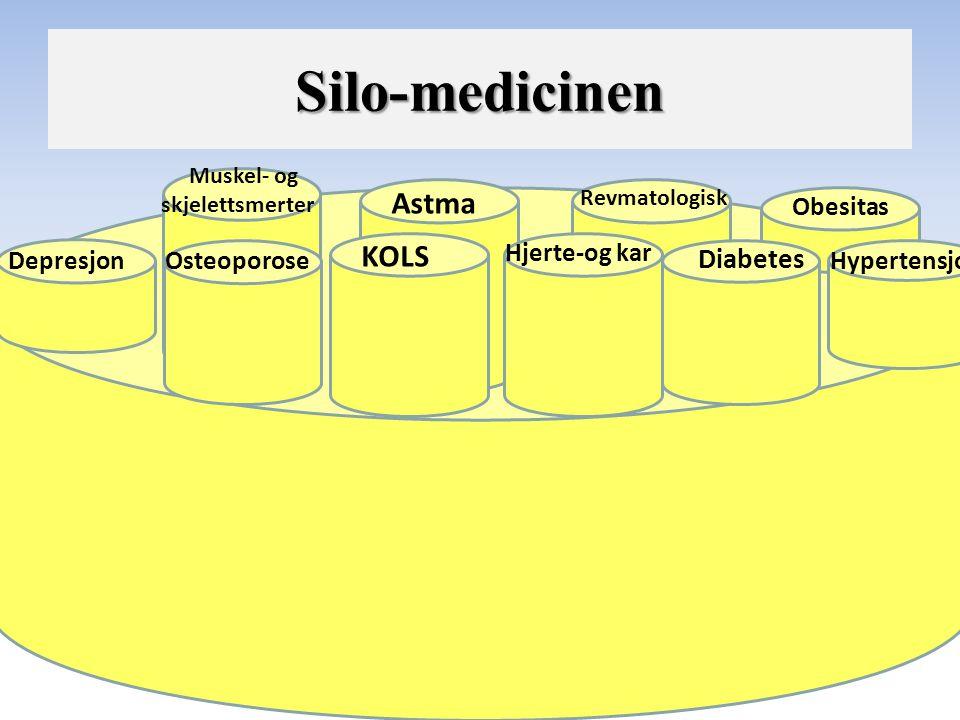 Depresjon KOLS Hjerte-og kar Diabetes Hypertensjon Astma Obesitas Revmatologisk Muskel- og skjelettsmerter Osteoporose Silo-medicinen