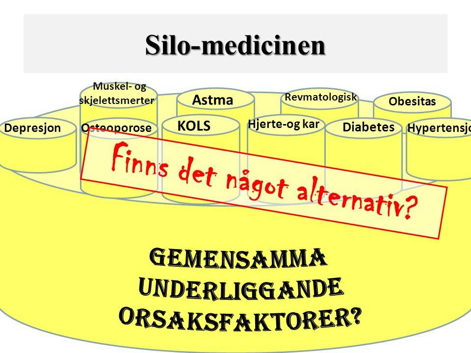 Depresjon KOLS Hjerte-og kar Diabetes Hypertensjon Astma Obesitas Revmatologisk Muskel- og skjelettsmerter Osteoporose Silo-medicinen Finns det något