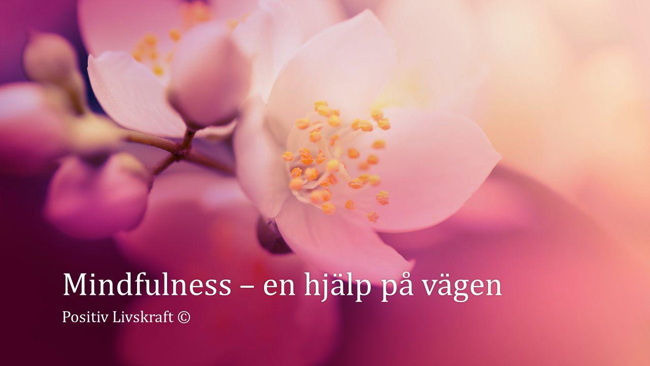 Mindfulness – en hjälp på vägenMindfulness – en hjälp på vägen Positiv Livskraft ©Positiv Livskraft ©