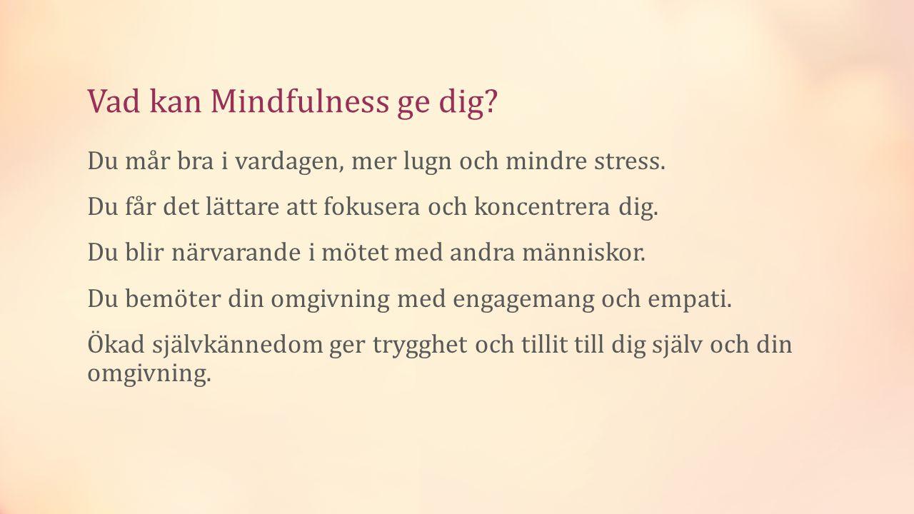 Vad kan Mindfulness ge dig.Du mår bra i vardagen, mer lugn och mindre stress.
