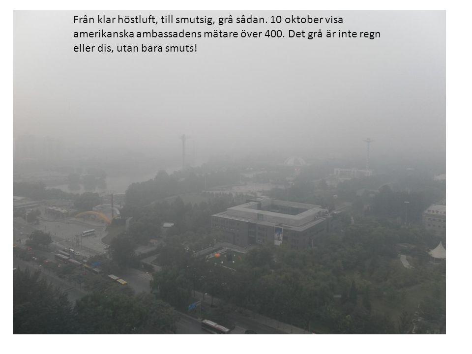 Från klar höstluft, till smutsig, grå sådan. 10 oktober visa amerikanska ambassadens mätare över 400. Det grå är inte regn eller dis, utan bara smuts!