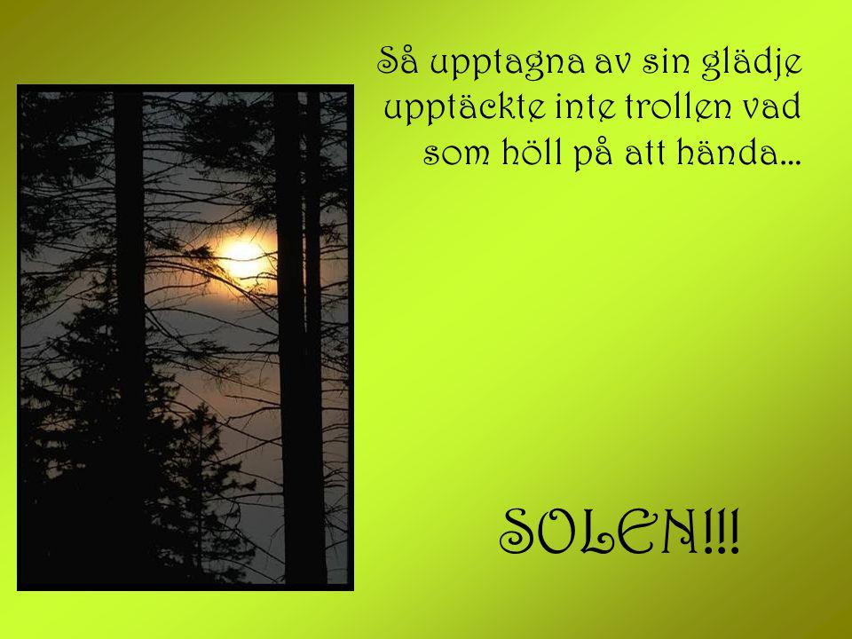 Så upptagna av sin glädje upptäckte inte trollen vad som höll på att hända… SOLEN!!!