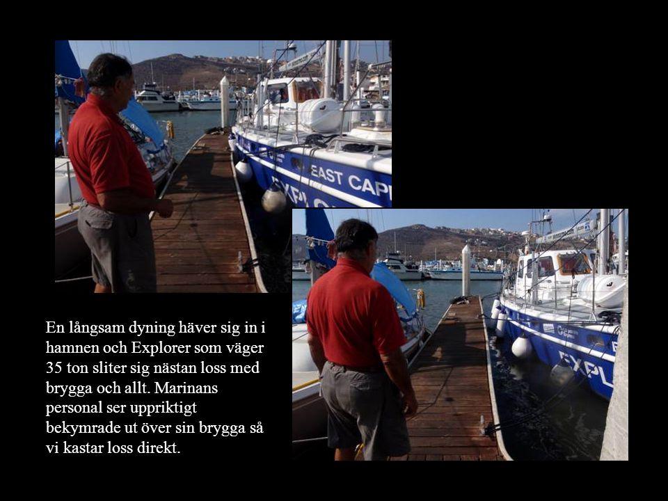 En långsam dyning häver sig in i hamnen och Explorer som väger 35 ton sliter sig nästan loss med brygga och allt.