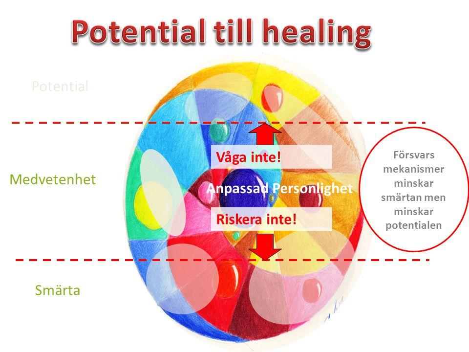 Medvetenhet Anpassad Personlighet Riskera inte! Våga inte! Försvars mekanismer minskar smärtan men minskar potentialen Potential Smärta