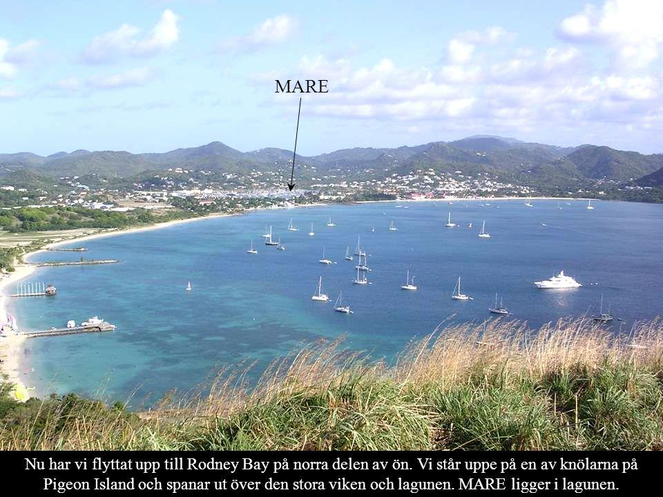 Nu har vi flyttat upp till Rodney Bay på norra delen av ön.