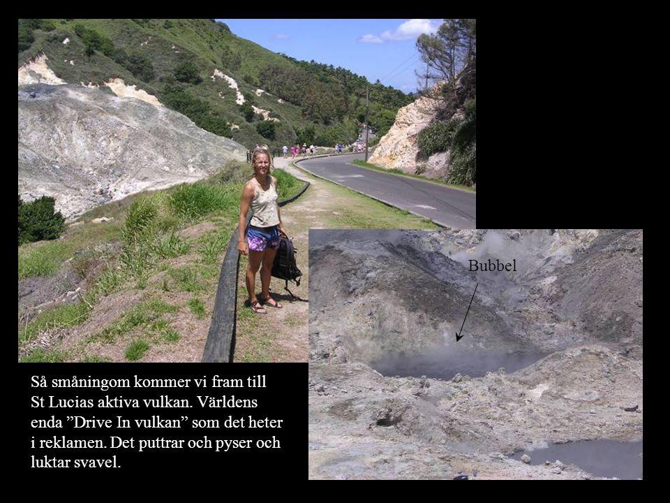 Så småningom kommer vi fram till St Lucias aktiva vulkan.
