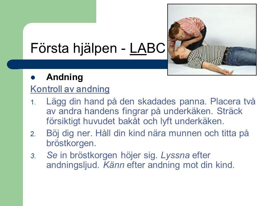 Första hjälpen - LABC Andning Kontroll av andning 1. Lägg din hand på den skadades panna. Placera två av andra handens fingrar på underkäken. Sträck f