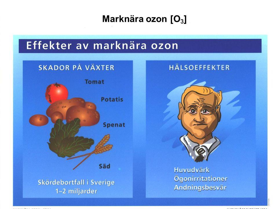 Marknära ozon [O 3 ]