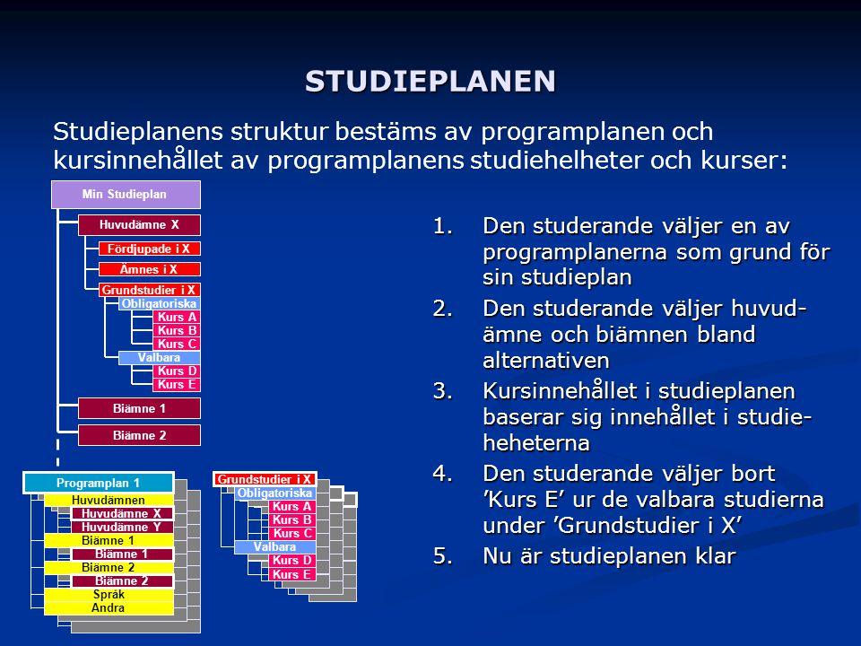 Programplan 1 Huvudämnen Biämne 1 Biämne 2 Språk Andra Huvudämne X Huvudämne Y Biämne 1 Biämne 2 Programplan 1 Huvudämnen Biämne 1 Biämne 2 Språk Andr
