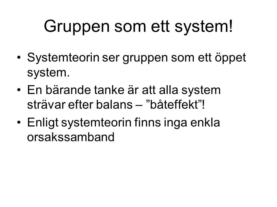 """Gruppen som ett system! Systemteorin ser gruppen som ett öppet system. En bärande tanke är att alla system strävar efter balans – """"båteffekt""""! Enligt"""