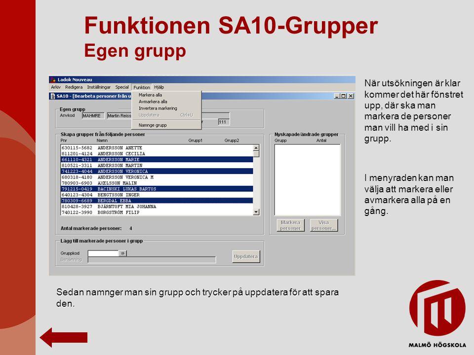 Funktionen SA10-Grupper Egen grupp När utsökningen är klar kommer det här fönstret upp, där ska man markera de personer man vill ha med i sin grupp. I