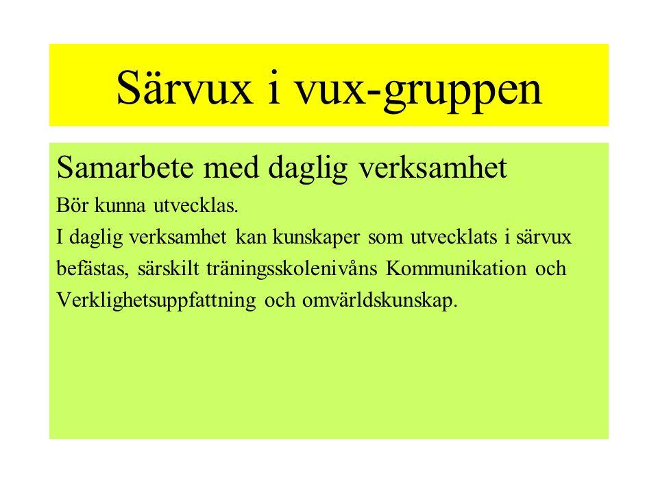 Särvux i vux-gruppen Samarbete med daglig verksamhet Bör kunna utvecklas.