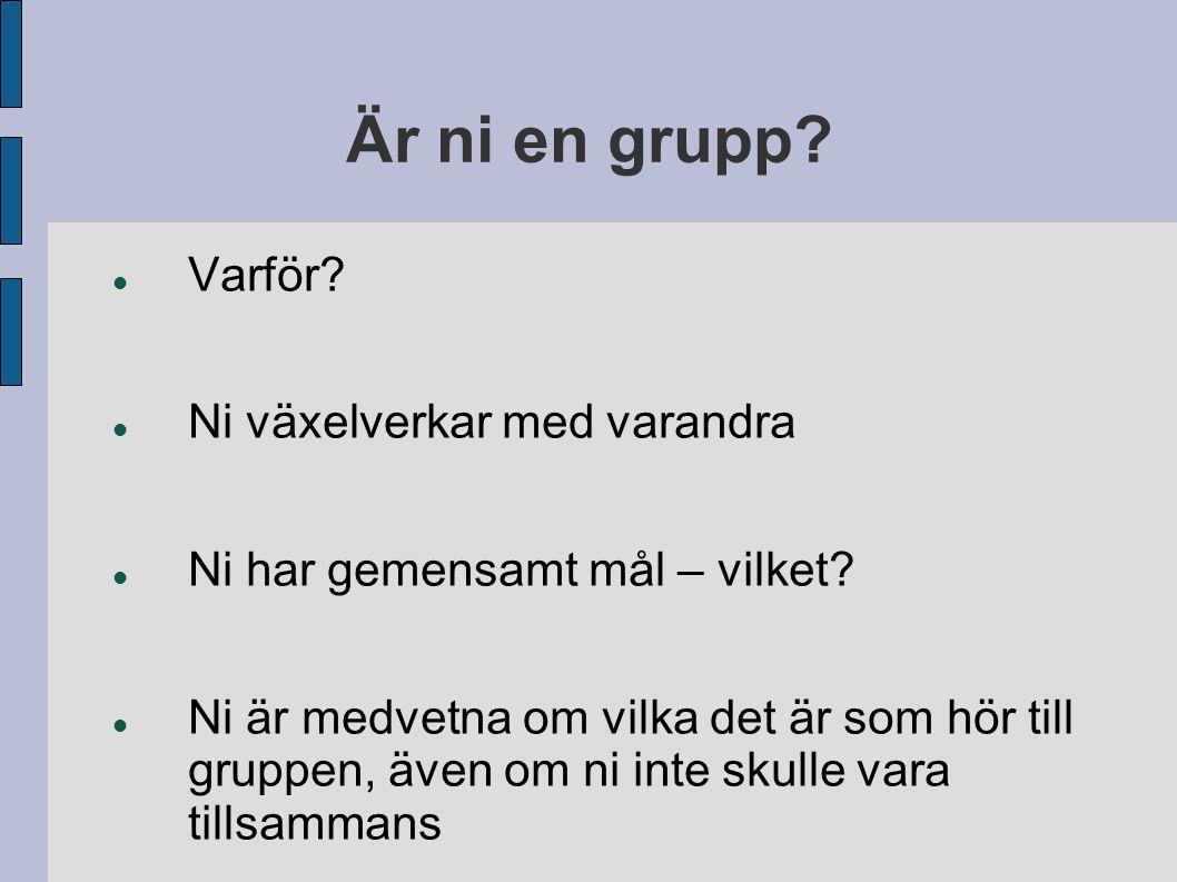 Utegrupp versus innegrupp - När utegruppen är närvarande lyfts vår grupptillhörighet fram: t.ex.