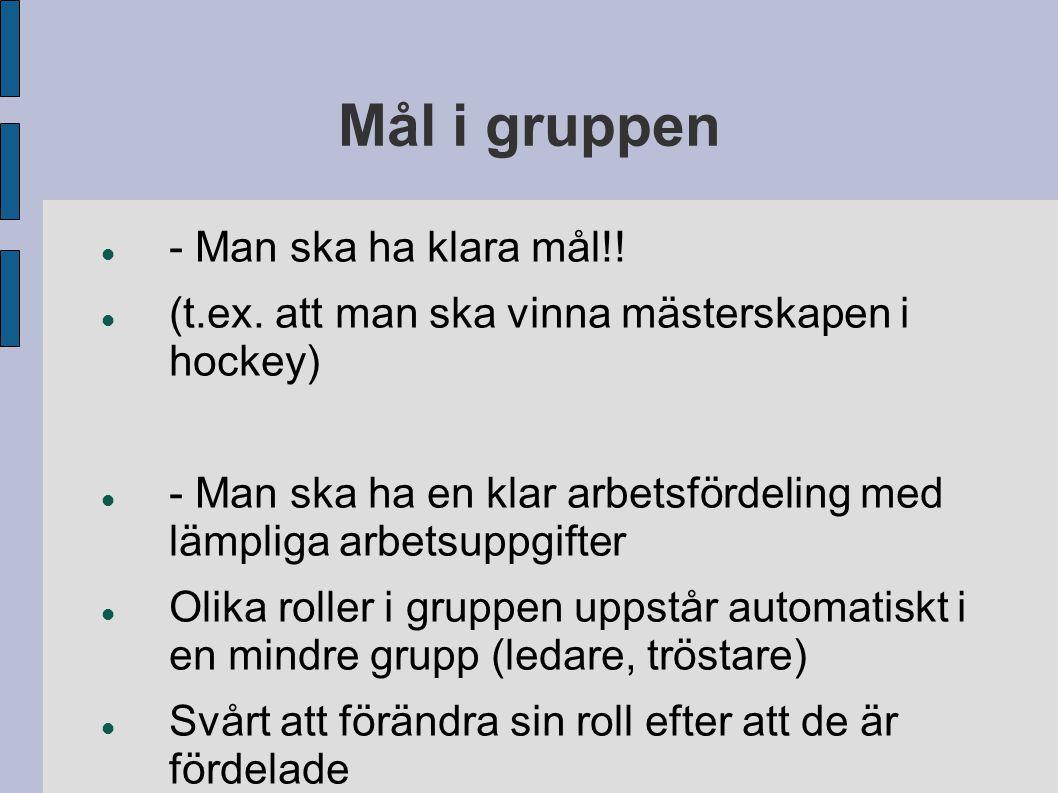 Mål i gruppen - Man ska ha klara mål!! (t.ex. att man ska vinna mästerskapen i hockey) - Man ska ha en klar arbetsfördeling med lämpliga arbetsuppgift