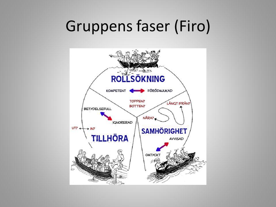 Analysera utifrån FIRO Gruppen S3c – beteende Vilken fas är ni i nu.