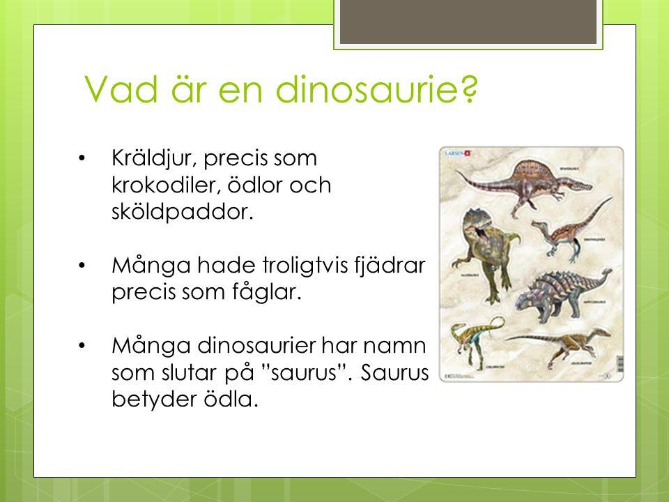 Vad är en dinosaurie? Kräldjur, precis som krokodiler, ödlor och sköldpaddor. Många hade troligtvis fjädrar precis som fåglar. Många dinosaurier har n