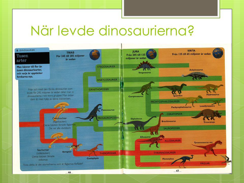 Olika sorters dinosaurier - från små till gigantiska  Microraptor – liten, cirka 1 m lång  Vägde mindre än två kilo  En av de första dinosaurierna som fanns  Levde i Kina under kritaperioden  Fjädrar och vingar och gled genom luften  Köttätare