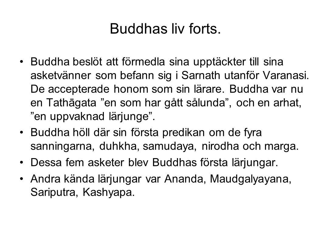 Buddhas liv forts. Buddha beslöt att förmedla sina upptäckter till sina asketvänner som befann sig i Sarnath utanför Varanasi. De accepterade honom so