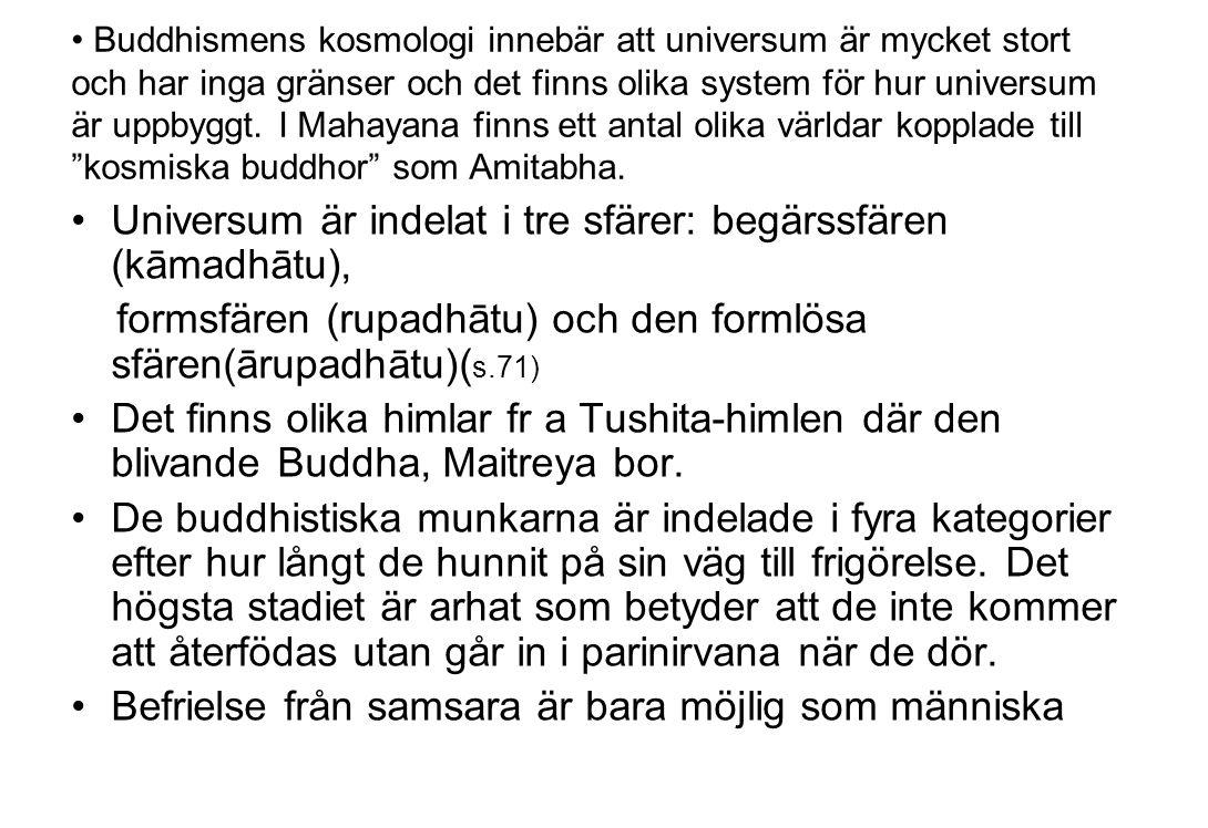 Buddhismens kosmologi innebär att universum är mycket stort och har inga gränser och det finns olika system för hur universum är uppbyggt. I Mahayana