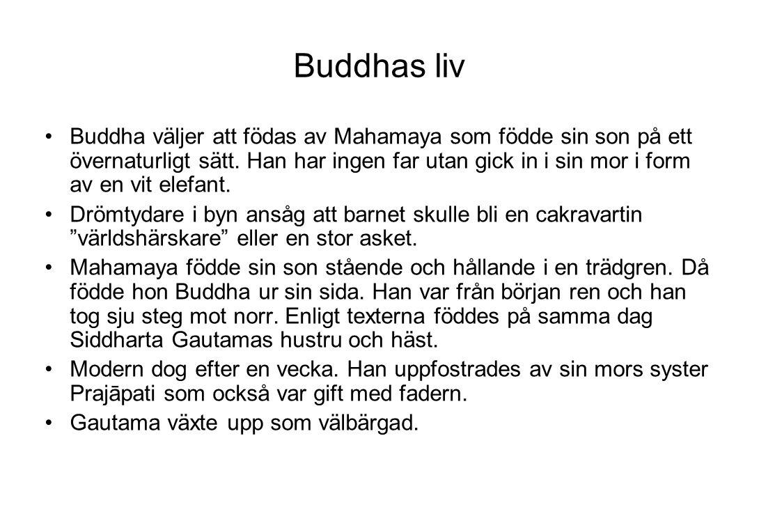 Buddhas liv Buddha väljer att födas av Mahamaya som födde sin son på ett övernaturligt sätt. Han har ingen far utan gick in i sin mor i form av en vit