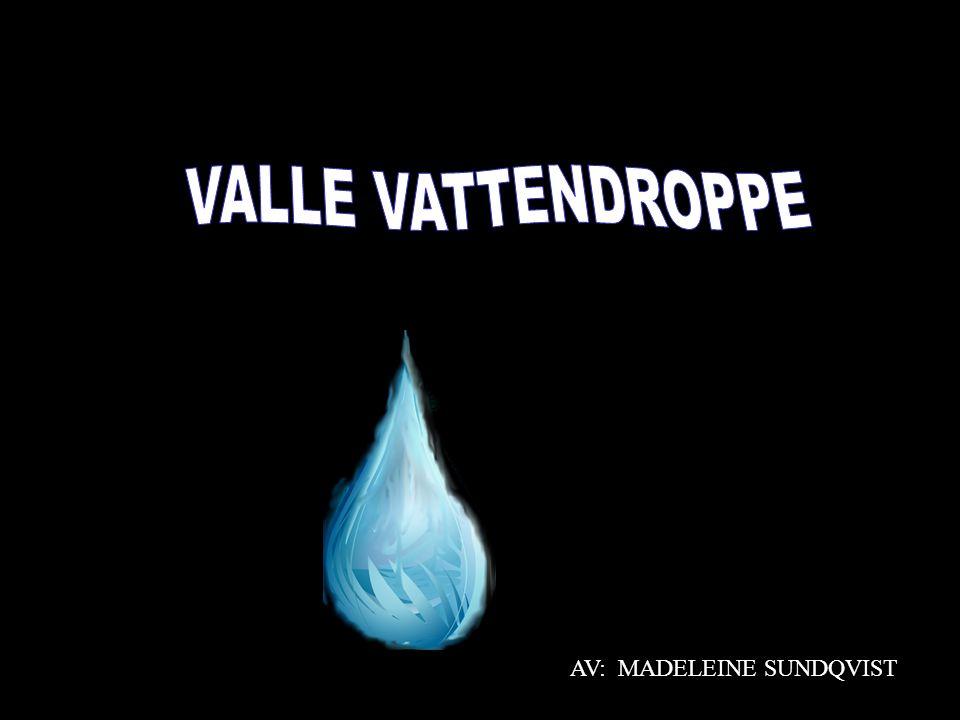 AV: MADELEINE SUNDQVIST