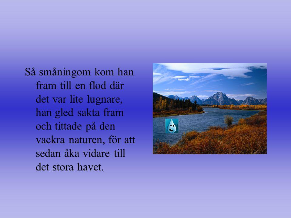 Källor Samtliga foton är hämtade från ClipArt Gallery http://office.microsoft.com/sv- se/clipart/results.aspx?qu=vattenhttp://office.microsoft.com/sv- se/clipart/results.aspx?qu=vatten Fakta är från bok av: Walpole, Brenda, 1988 Kul att kunna om vatten.