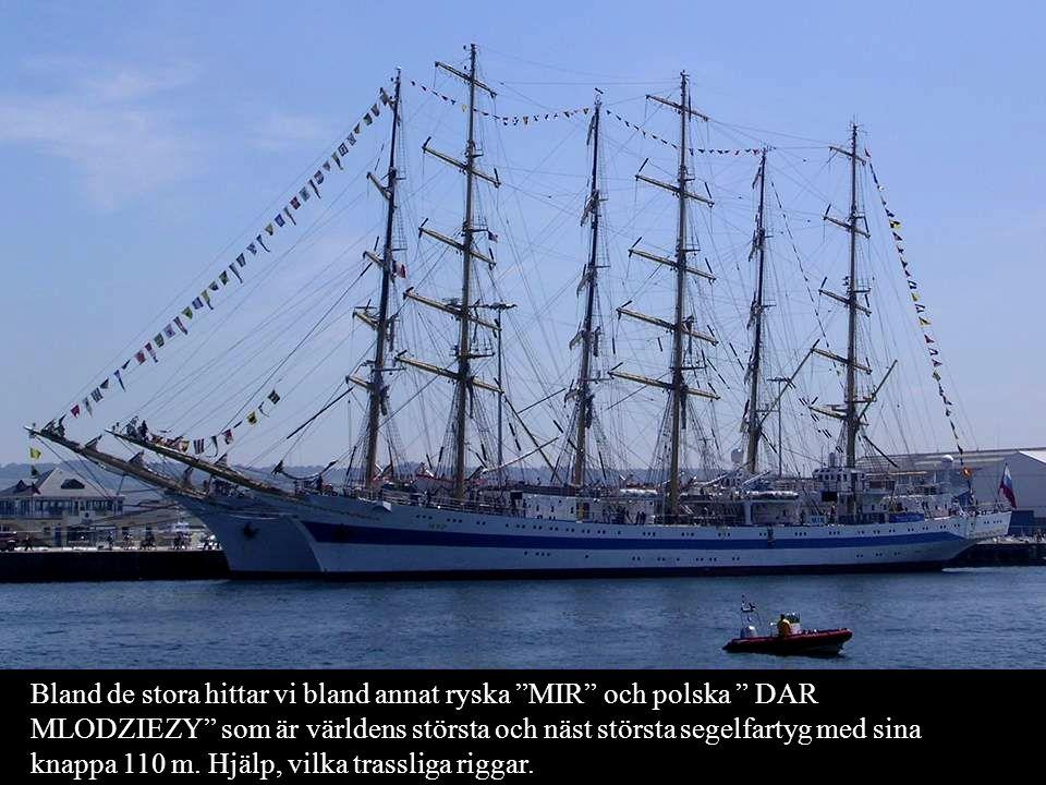 Bland de stora hittar vi bland annat ryska MIR och polska DAR MLODZIEZY som är världens största och näst största segelfartyg med sina knappa 110 m.